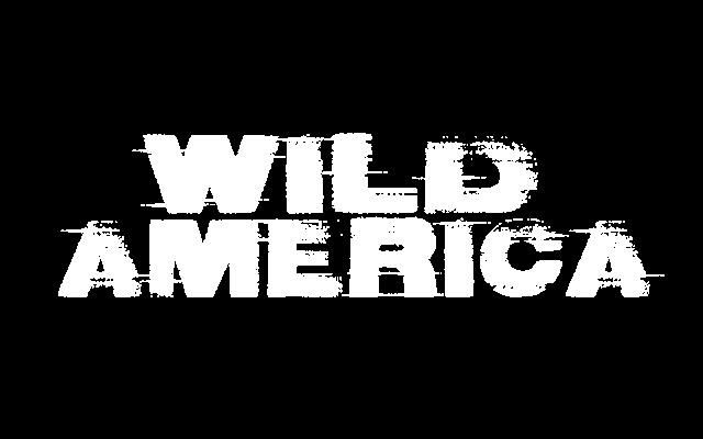 https://www.newenglandrockfest.com/wp-content/uploads/2019/05/WildAmerica-1-640x400.png